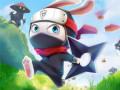 Jocuri Ninja Rabbit